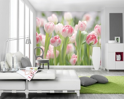 Wall murals all the posters you could desire available - Poster mural sur mesure ...